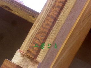 20120306-022.jpg